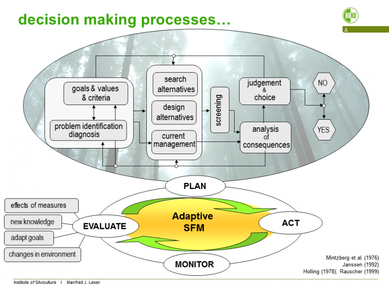 Figure 1. Planning process according to Mintzberg et al. (1976, modified). For explanation see text. The adaptive management cycle is closed by the bold arrows feeding back from implementing actions via monitoring to diagnosis & problem identification.