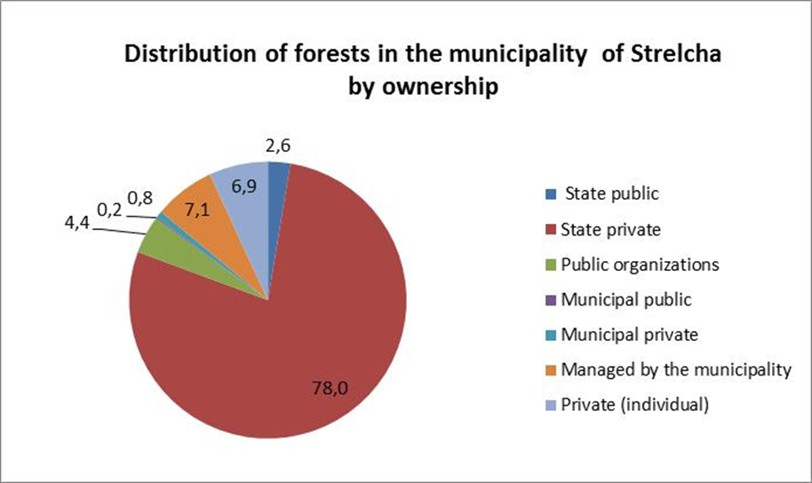 : Forest ownership structure in the municipality of Strelcha (source: Forest management plan of SFE Panagyurishte, 2006).