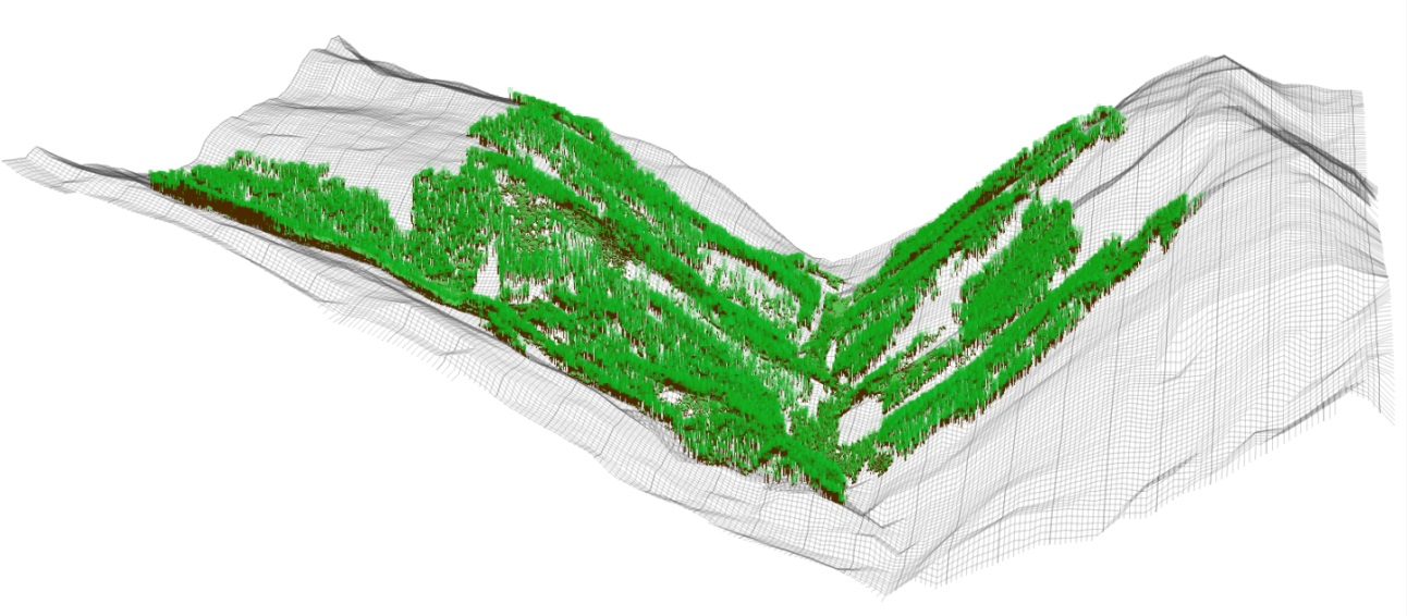 Figure MO-6: Landscape level visualization of 215 ha of forests embedded in a framework of non-stockable gullies and avalanche tracks in the Rellstal valley, Montafon. This small side valley features one south- (right) and one north-facing slope (left). They extend from 1160 m a.s.l. at the valley bottom to the actual timberline at around 1800 m a.s.l.